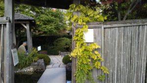 The David G. Porter Memorial Japanese Garden