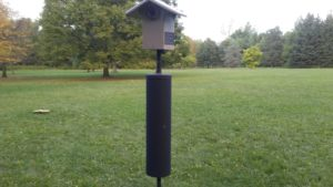 Nesting box with squirrel stopper