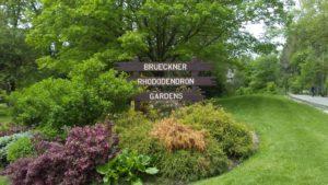 BRG Entrance