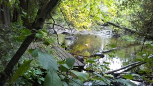 Hidden access to the river