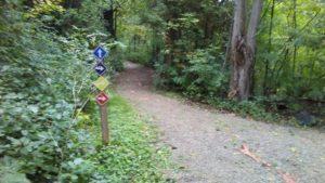 Four trails
